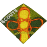 Scouts-participacion