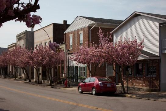 Down town on Main Street 5