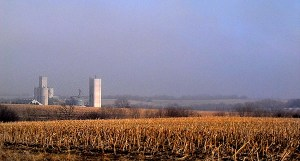 Nebraska Fog in the Country
