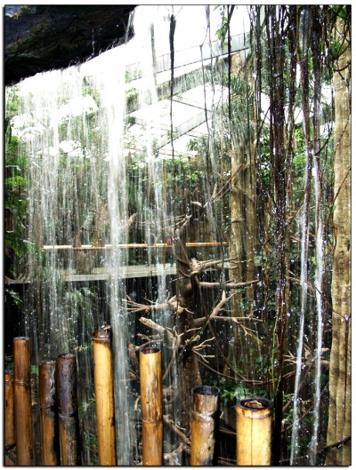 The Lied Jungle in Omaha Nebraska has several large indoor waterfalls, many you can walk under and get refreshed