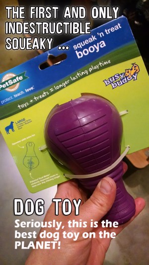 chew toys for aggressive chewers