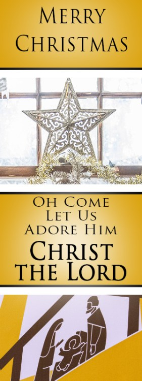 O Come Let Us Adore Him, Christ the Lord is Born today!! Celebrate Christmas with this popular Christmas hymn O Come All Ye Faithful. Find lyrics, sheet music and more.