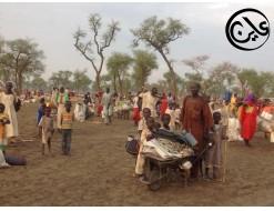 الحرب في النيل الازرق ... سياسة الارض المحروقة