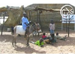 عقد من الزمان على قضية دارفور ومرواحة الحل