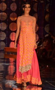 Rina Dhaka (MSN)