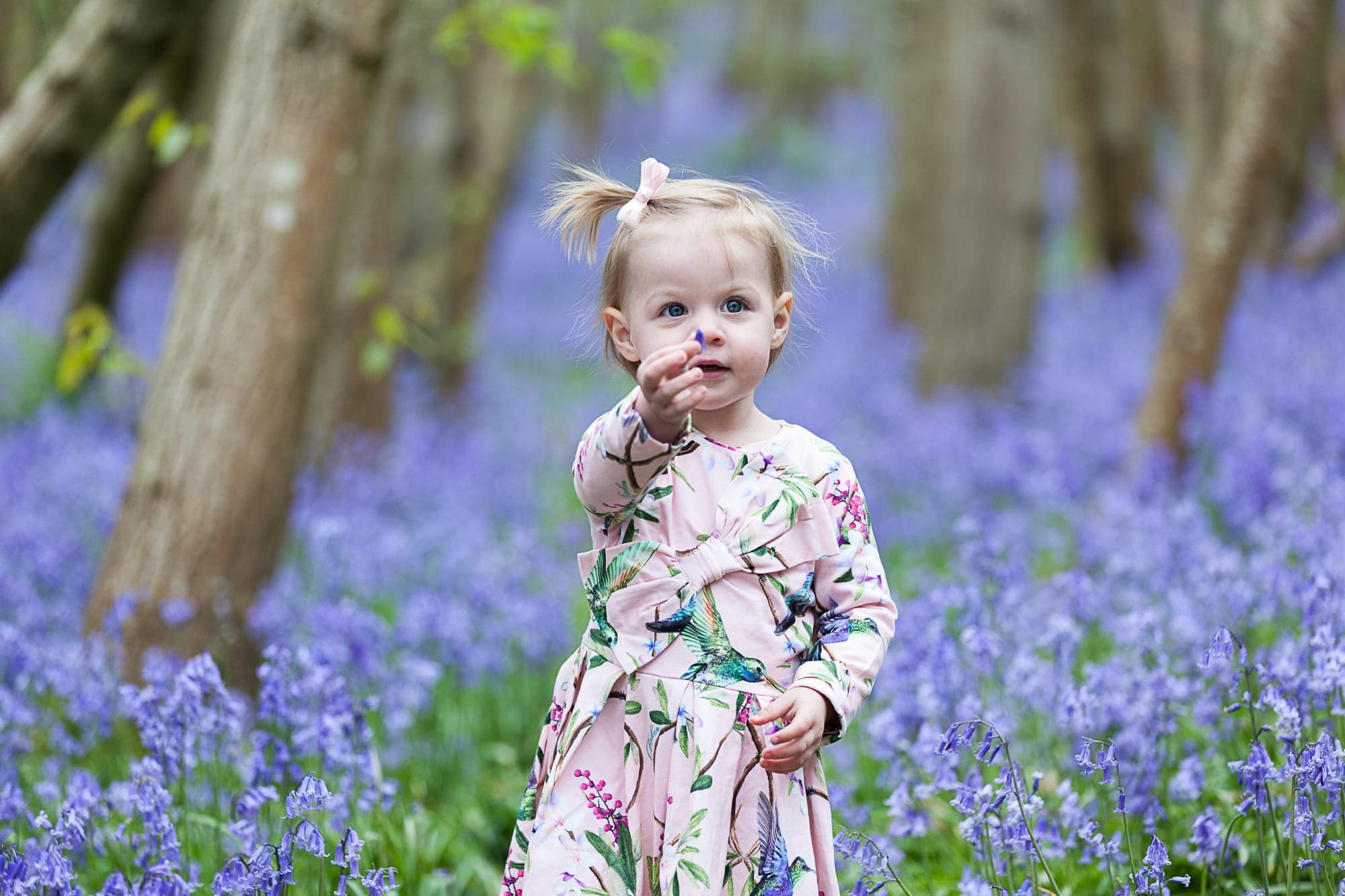 little girl stood in the bluebells at Riverhill Himalayan Gardens at her Sevenoaks family Bluebell photoshoot