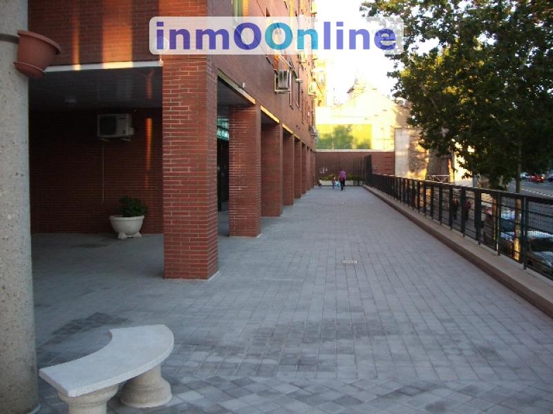 IMGP3905.JPG