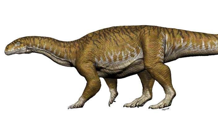 Los huesos de dinosaurios gigantes consiguen que los arqueólogos reconsideren el período triásico