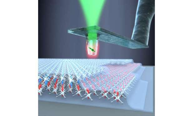 Unprecedented view of two-dimensional magnets that use diamond quantum sensors.