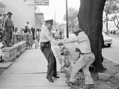 Dr. King- Alabama segregationist Bull Connor ordered police to use dogs and fire hoses on black demonstrators in May 1963.