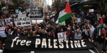 Gaza solidarity 12