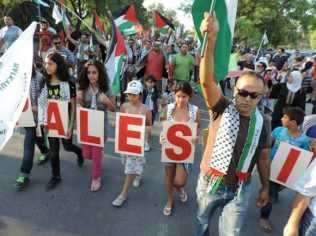 Protests for Gaza10