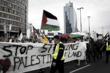 Protests for Gaza14