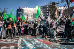 Protests for Gaza20