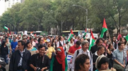 Protests for Gaza23