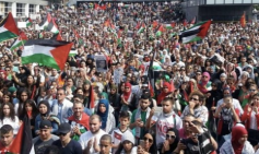 Protests for Gaza31