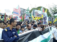 Protests for Gaza44