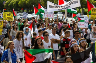 Protests for Gaza63