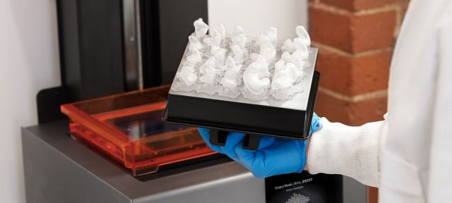 formlabs silicone moulds