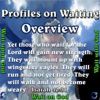 Profiles on Waiting – Overview