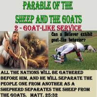 Parable of the Sheep and Goats – 2 – Goat-like Service