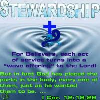 Stewardship Ripples become Waves