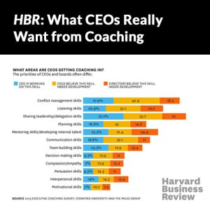 CEOCoaching