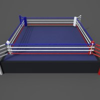 Boxing  Ring PBR 3D Model