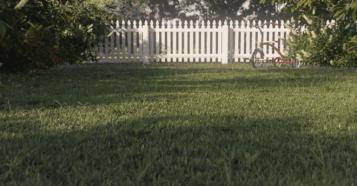 The Grass Essentials Trailer - Made with Blender