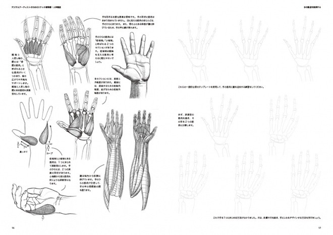 Sketch Workshop Anatomy02