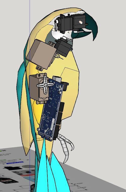 parrot8