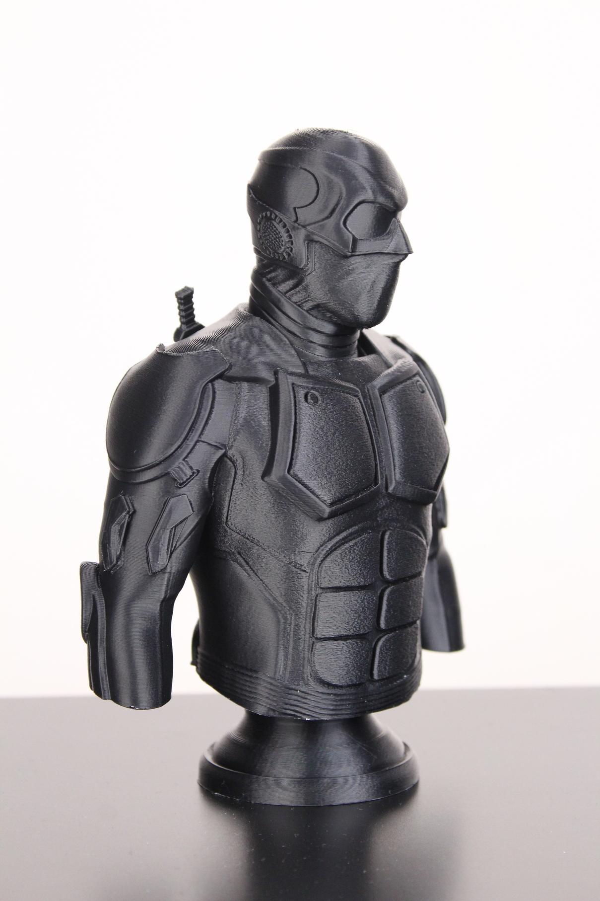 Black-Noir-Bust-on-Sermoon-D1-ABS-print-8