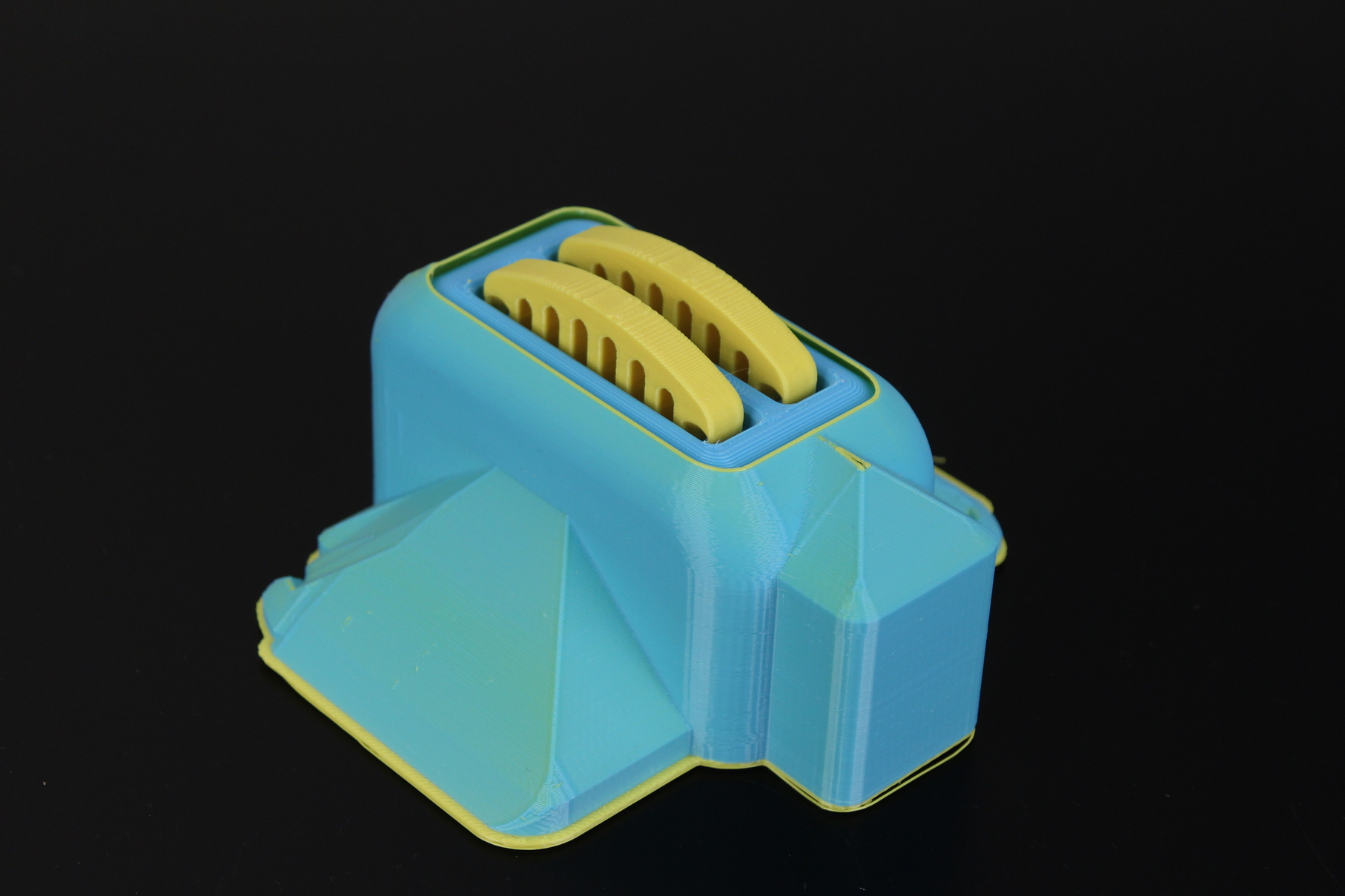 Dual-Color-Torture-Toaster-on-Flashforge-CP2-9
