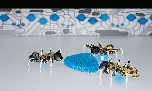 Three BionicANTs working together as one mimicking ant behaviour. Source: Festo