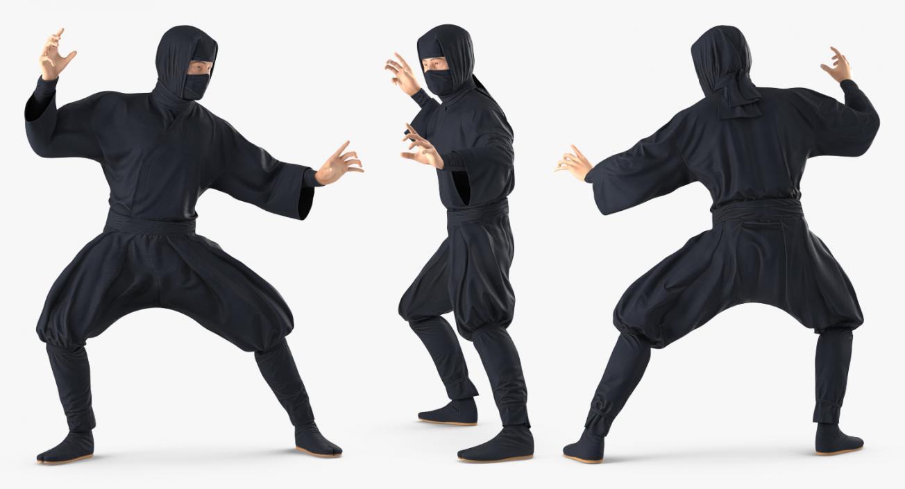Image result for ninja japan