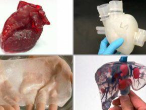 3d printed organs bioprinting