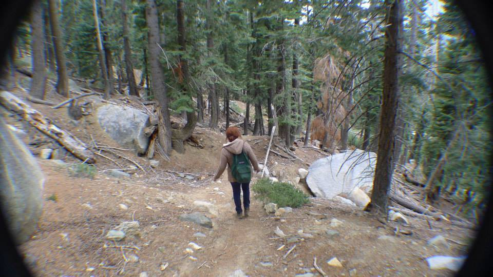 hiking woods social media detox