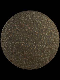avocado skin organic fruit