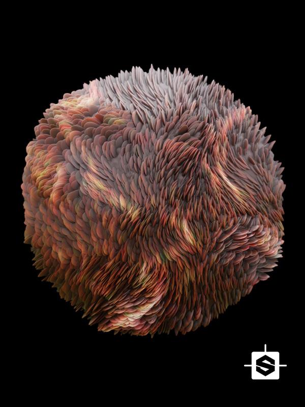 abstract organic animal fur shells