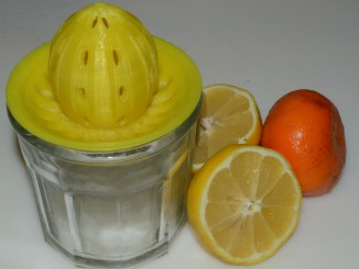 3D printed lemon juicer