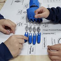 Students assembling a 3D printed e-nable hand