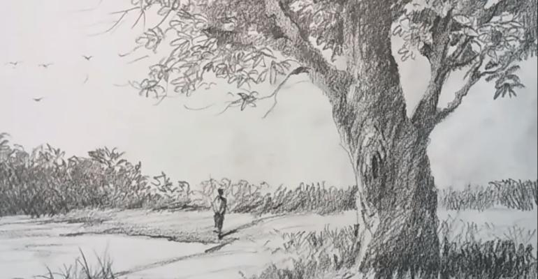 Sketch Art Drawing