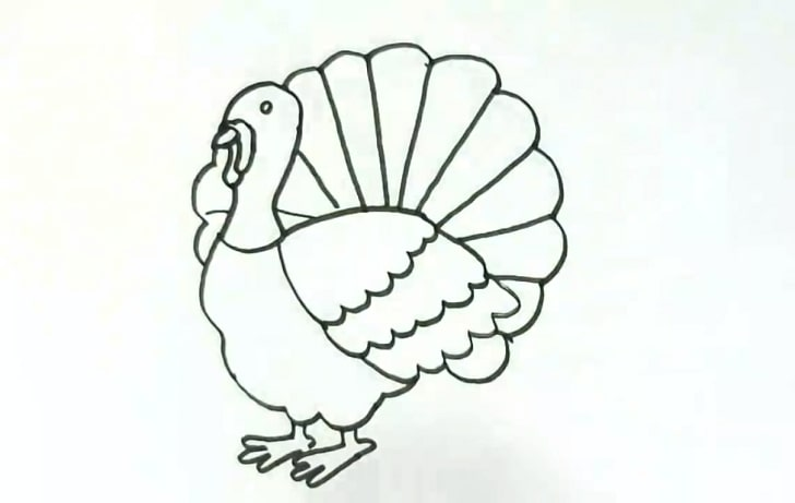 kids turkey drawing