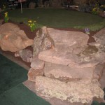 Home and Garden Show 2009 4