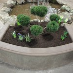 Home and Garden Show 2012 4