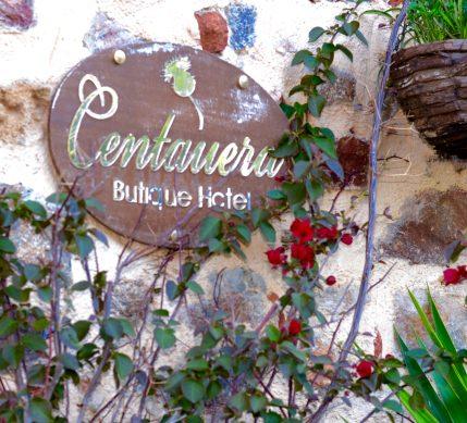 boutiquehotel13