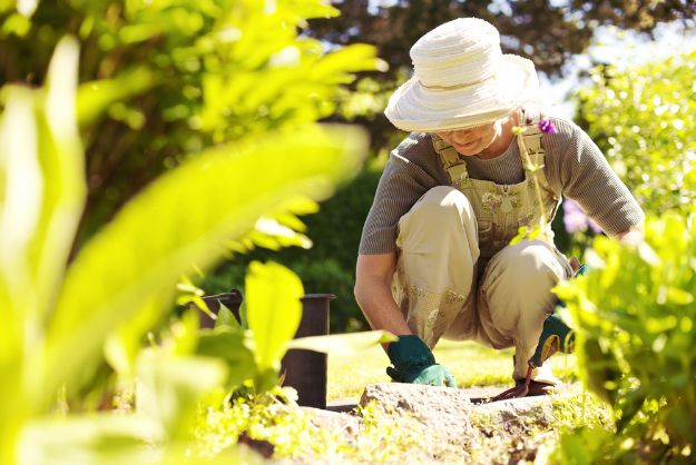 Start Gardening | Homesteading and Sustainability: How To Become Self Reliant