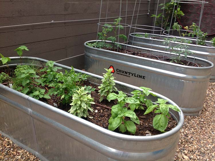 Raised Garden Troughs