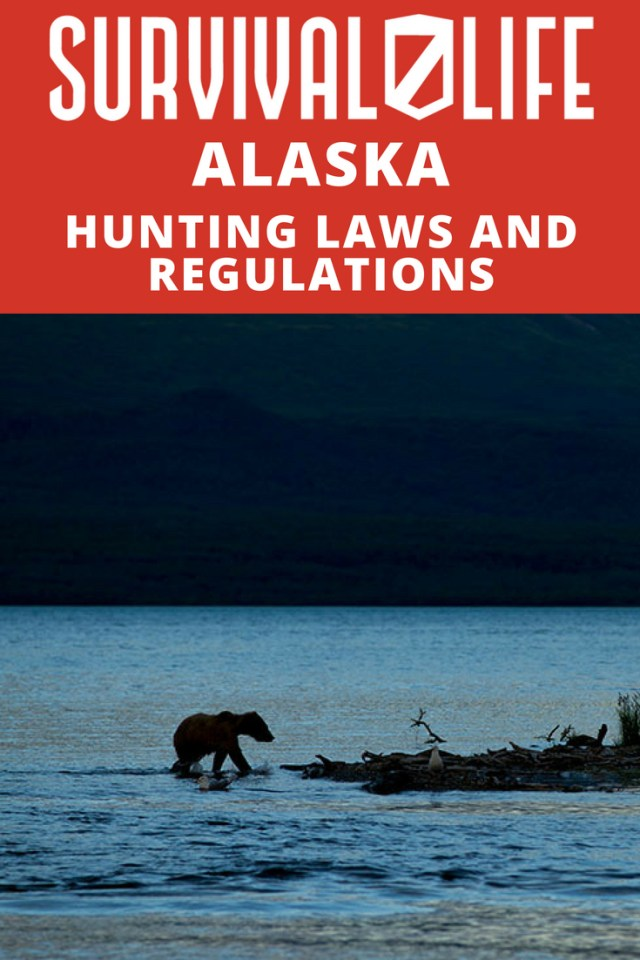Alaska Hunting Laws And Regulations https://survivallife.com/alaska-hunting-laws-and-regulations/