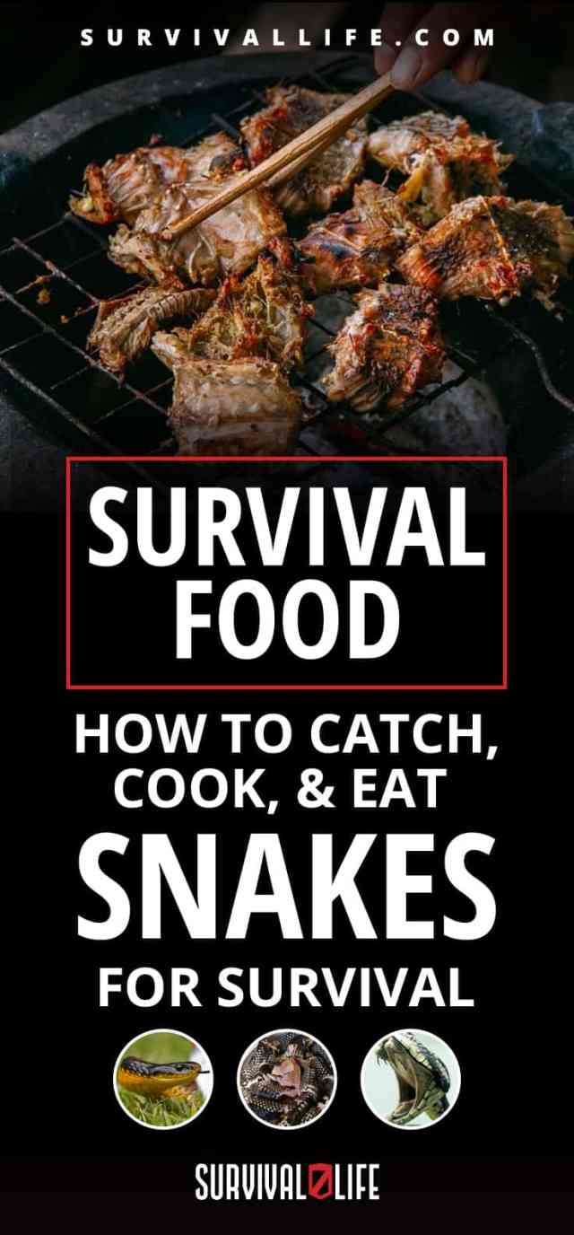 Placard | Survival Food | How To Catch, Cook, & Eat Snakes For Survival